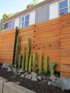This bit of fence, with a neat row of cactuses along it, reminded me of the cactus fence at frida kahlo's house in Mexico City