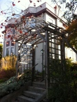 Delicate Arbor on Walnut Street