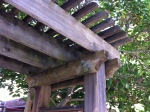 Detail of Hefty Arbor