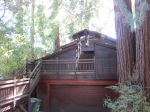 house in the redwoods