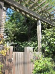 Close up of Cedar Street trellis and gate