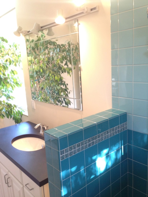 Tile Sink and Ficus