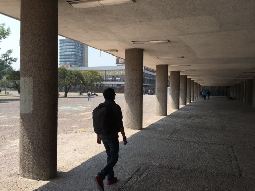 Approaching the Biblioteca Central UNAM