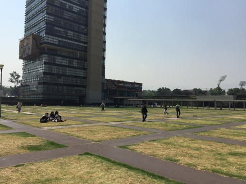 Grid of lawn squares and concrete paths