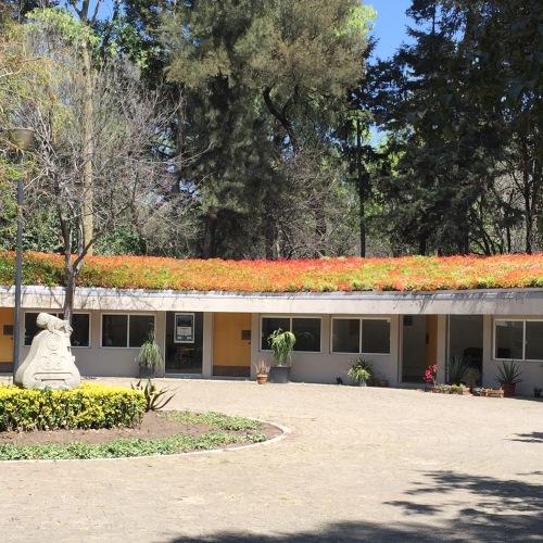 Living Roof - Jardin Botanico, Chapultapec